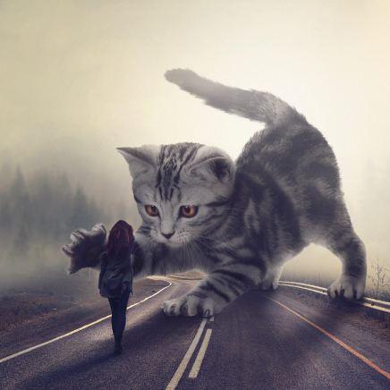 giant-animals-mani-photography-10