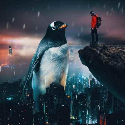giant-animals-mani-photography-14