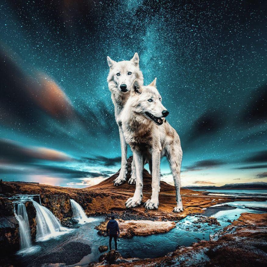 giant-animals-mani-photography-3
