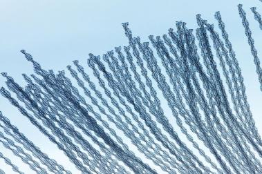 moving-birds-flight-paths-patterns-sky-18.adapt.945.1