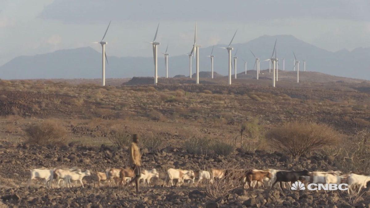 Kenya'da Afrika'nın en büyük rüzgar enerjisi santrali kuruldu