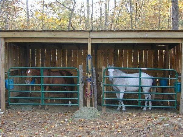 DIY Horse Shelter Designs