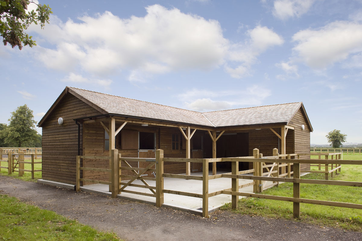 horse barn with stables