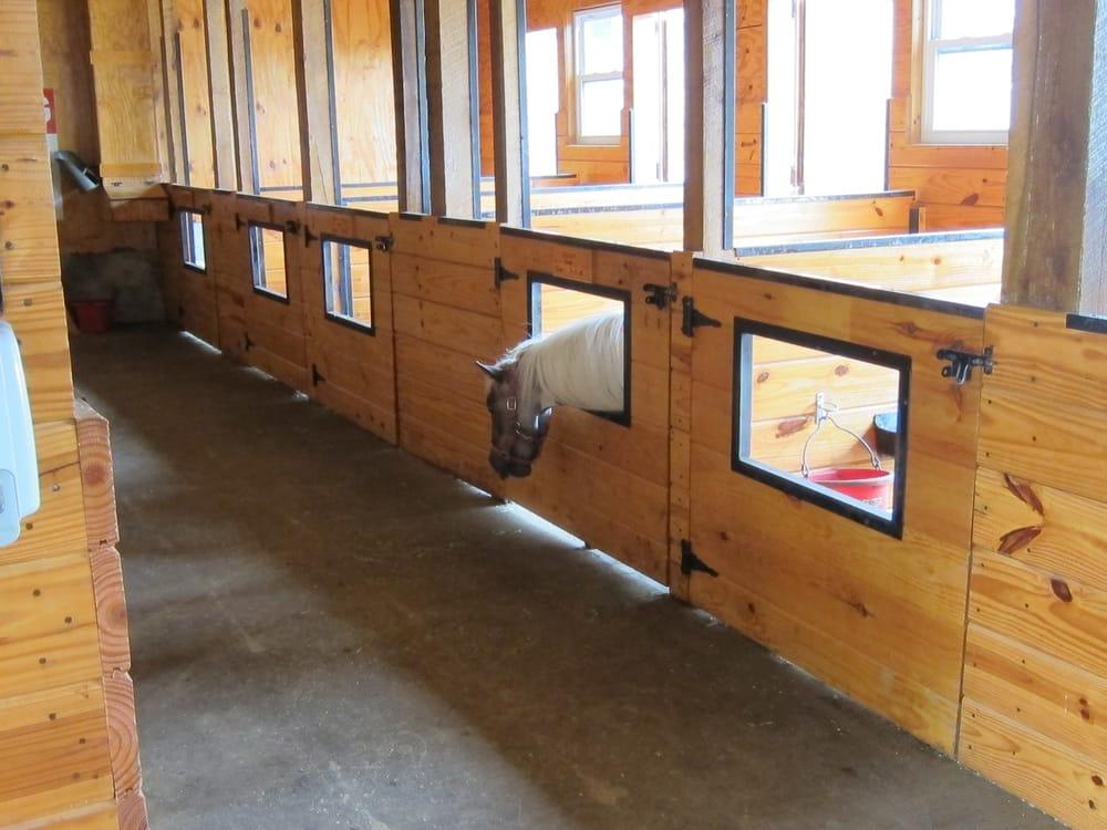 mini horse barn ideas
