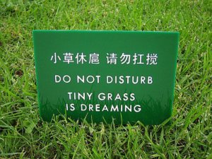 what is chinglish
