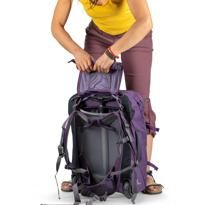 disadvantages wheeled backpacks
