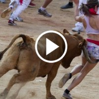 Beautiful Girl Hit By Mad Bull In Spain