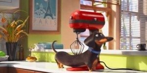 Photo Courtesy of Illumination Studios 'The Secret Life of Pets' fell short of the promise of its star-studded cast.
