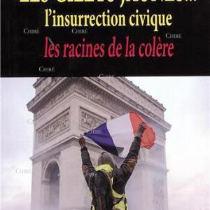 Les Gilets Jaunes. L'insurrection civique - Les racines de la colère