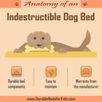 The Anatomy of an Indestructible Dog Bed
