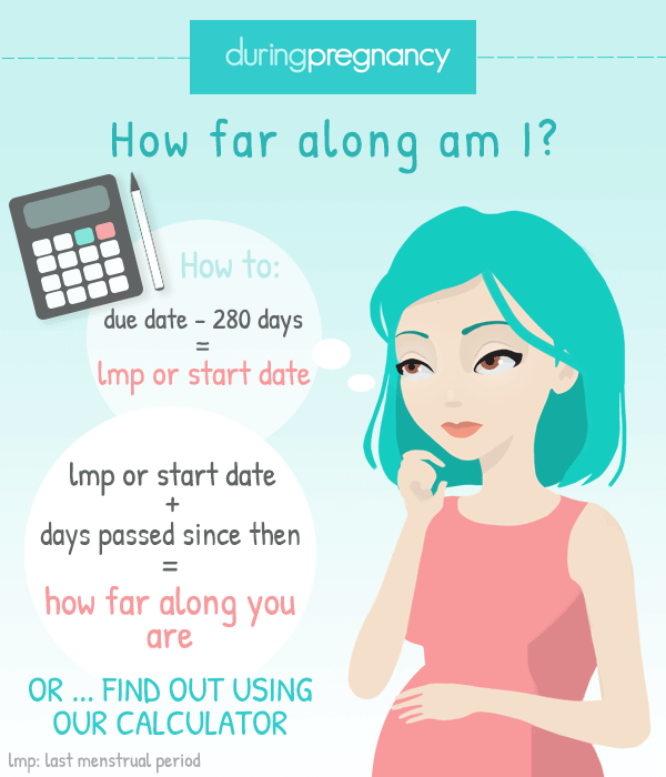 Pregnancy Calculator: How Far Along Am I? Find Out How ...