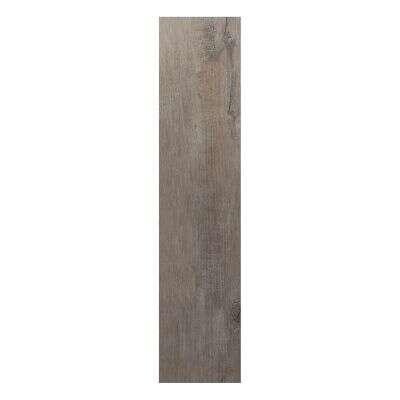 ARIANA ceramica Casa Tua Trento Fliese grigio 120 x 30 cm 5211913  Duschmeisterde