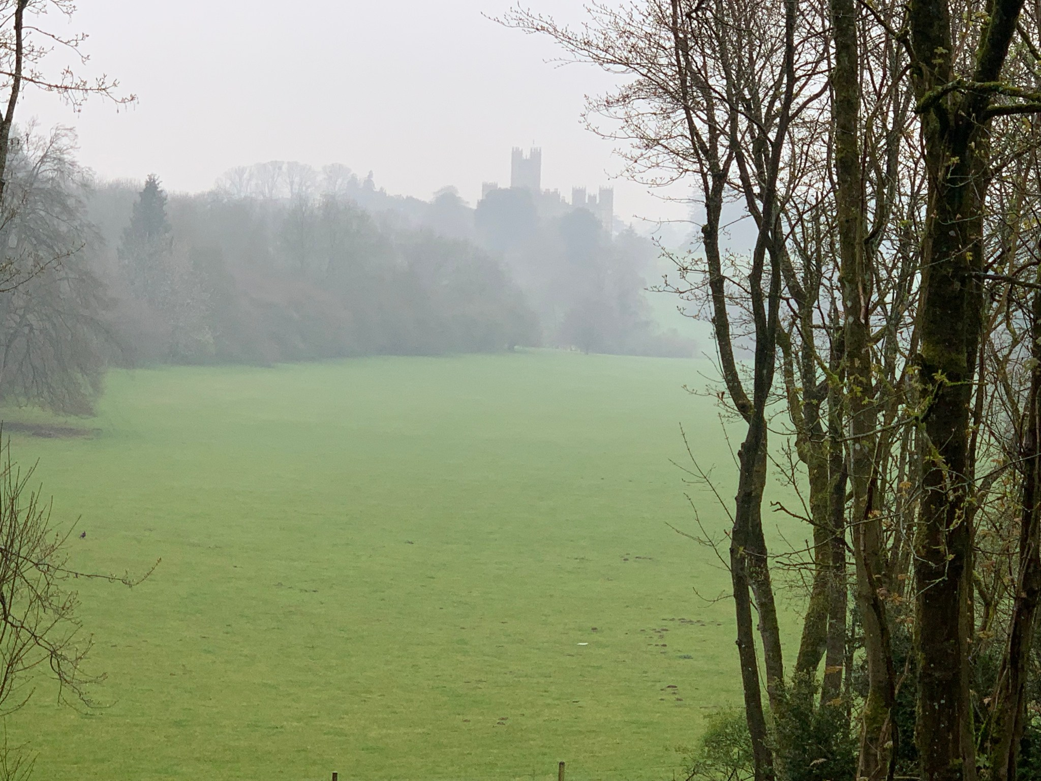 Highclere through the mist