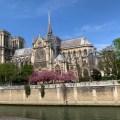 Notre Dame Side