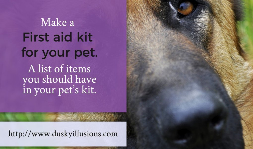 Make A First Aid Kit For Your Pet