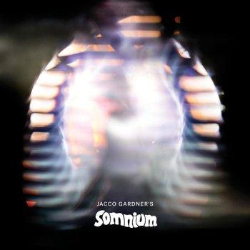 somnium jacco gardner album cover