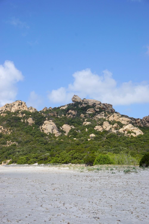 LION DE ROCCAPINA CORSE CORSICA PROPRIANO NATURE BLOG VOYAGE TOURISME 01
