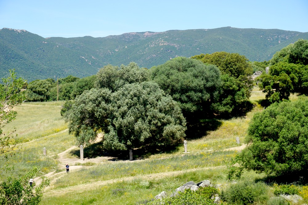 SITE PREHISTORIQUE FILITOSA CORSE CORSICA BLOG VOYAGE TOURISME 27