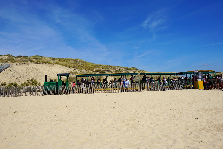 petit train bélisaire cap ferret blog voyage océan tourisme