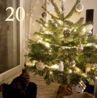 calendrier-de-lavent-2016-blog-bordeaux-noel-video-youtube-20