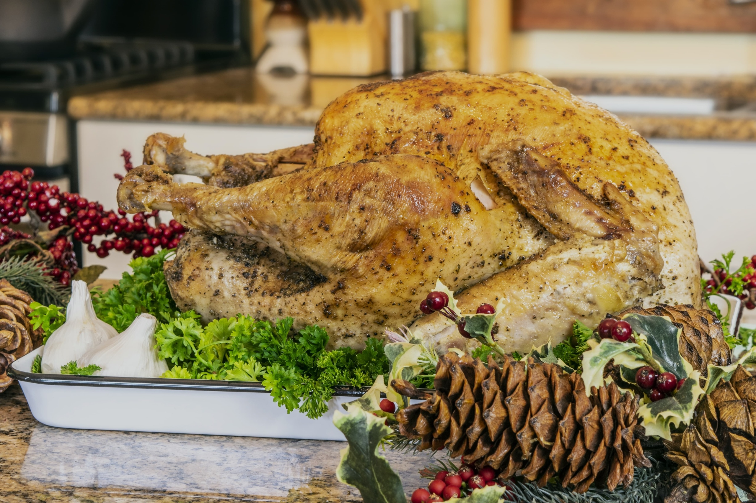 Oven-Baked Herbed Turkey