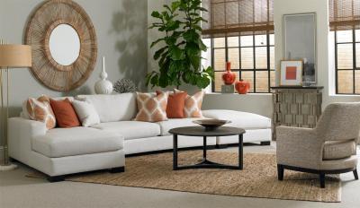 Jake Sectional with Chaise Lounge