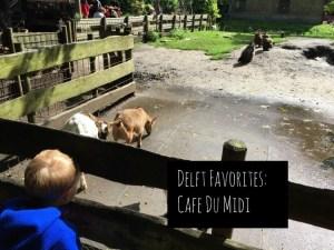 Cafe du Midi in Delft