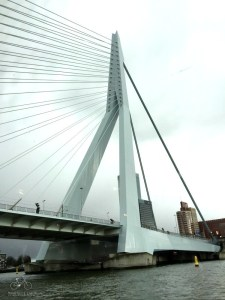 Erasmus Bridge Rotterdam from Pancake Cruise