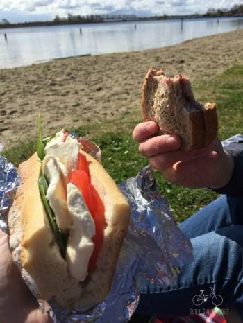 Picnic Sandwich Time