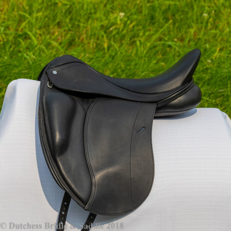 Loxley by Bliss Dressage Mono demo