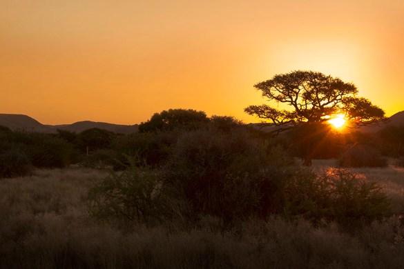 Hoogtepunten Namibië