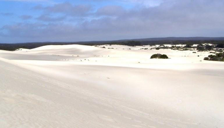 Little Sahara Kangaroo Island