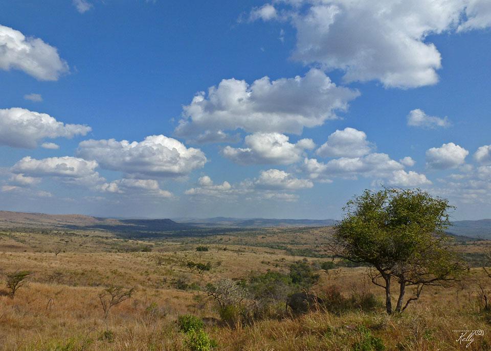Hluhluhe-Imfolozi National Park
