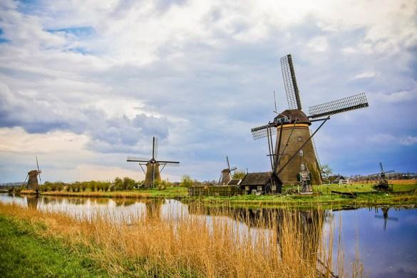 Gewoon Nederlands Tag