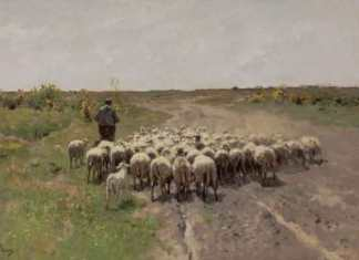 Anton Mauve - Heide te Laren uit 1887