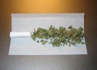 meest gebruikte drugs in Nederland