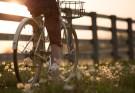 Tips voor buitenactiviteiten in Nederland