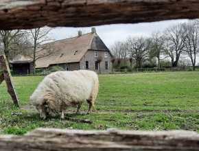 Oerdorp Orvelte - dagje uit in Drenthe