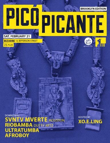 Pico Feb 2015 BK