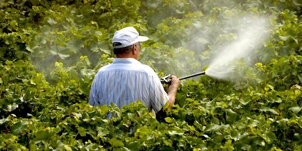 pesticide glyfosaat