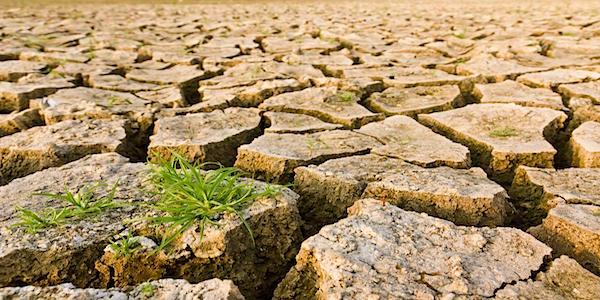 droogte landherstel