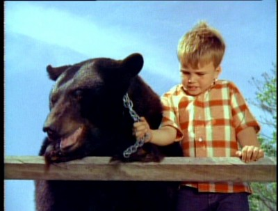Image result for gentle ben