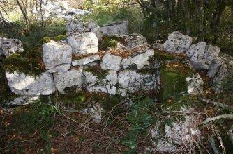 Baštija, gradinsko naselje ili torevi za stoku?