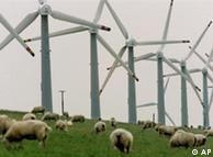 """""""Ветряной парк"""" на севере Германии"""