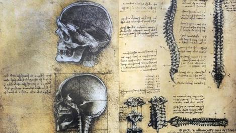 Desenhos anatômicos de Leonardo da Vinci