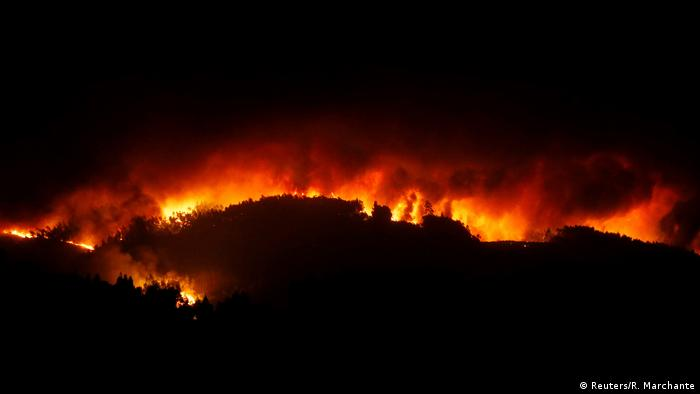Portugal forest fire (Reuters/R. Marchante)
