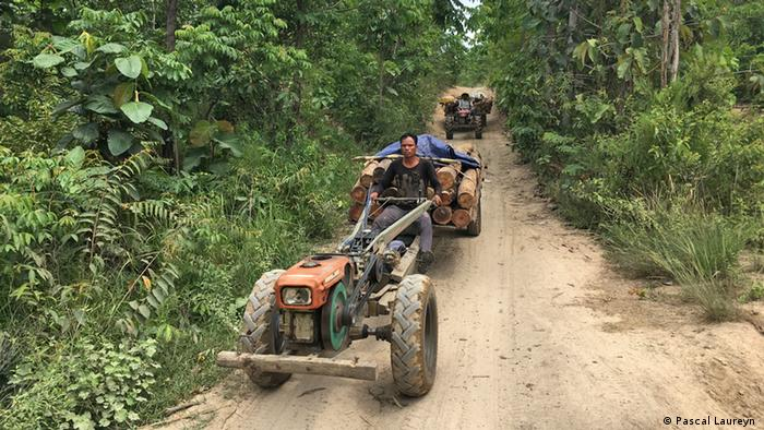 Two tractors transporting timber in Aoral Wildlife Sanctuary, Cambodia