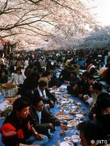 Church Blossom Festival in Japan at Ueno Park in Tokyo Japan (JNTO)