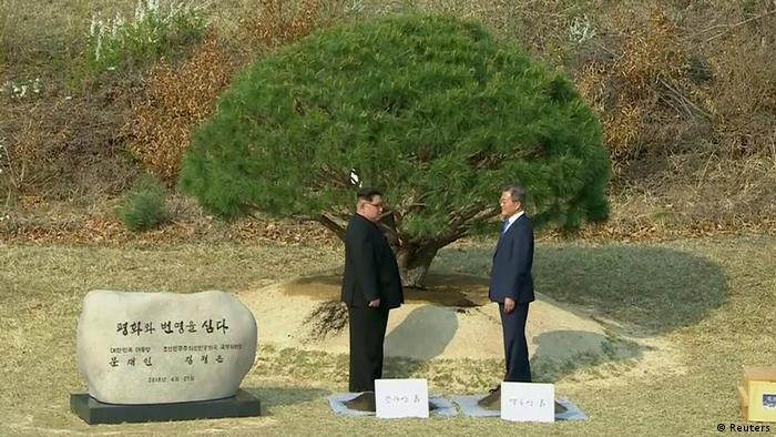 Kim Jong Un and Moon jae-in plant a tree together (Reuters)