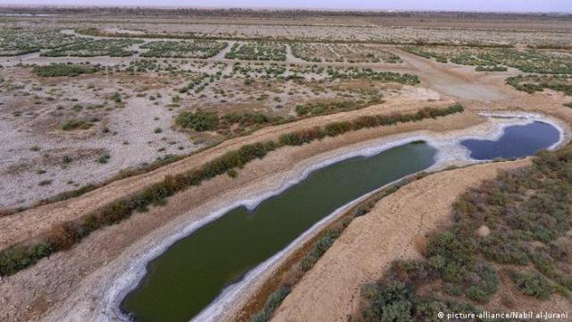 Irak, Wasserknappheit und Dürre (picture-alliance/Nabil al-Jurani)